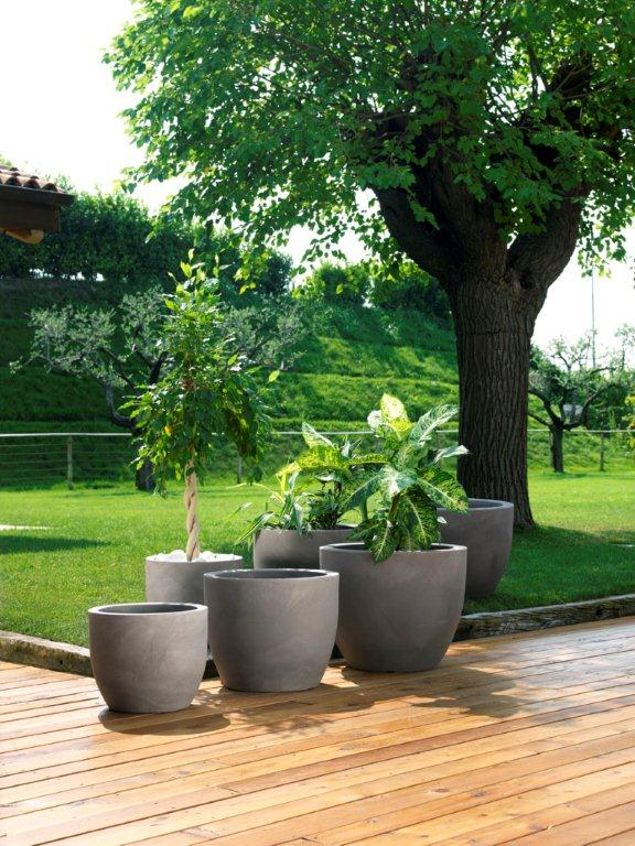 Pitchers for your garden