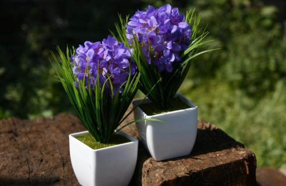 Plants-artificial-design-natural