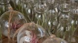 air plants _glass 03