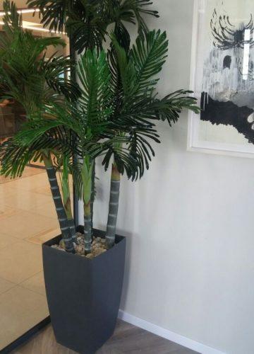 פרוייקט צמחיה מלאכותית וצמחי אוויר במשרד עורכי דין בירושלים