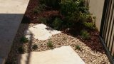 ground-cover-vegetation-stepping-stones 02