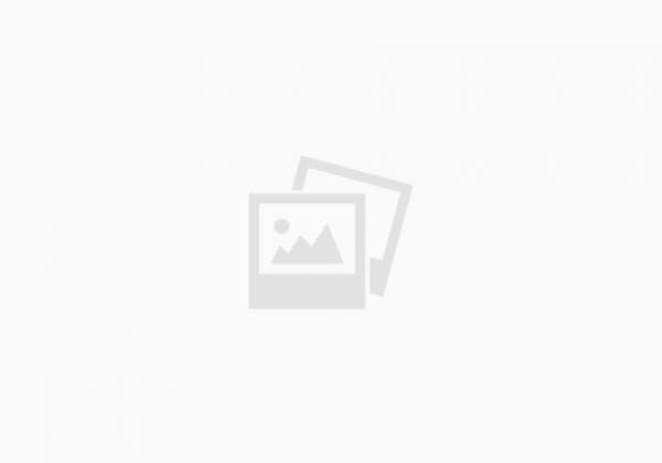 עיצוב גינות גדולות – 5 דונם