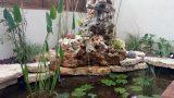 ponds for gardens 02