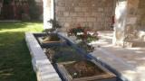 ponds for gardens 11