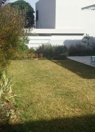 טיפול לגינה ותיקה בתל אביב