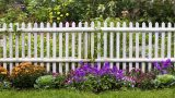 wooden fences 04