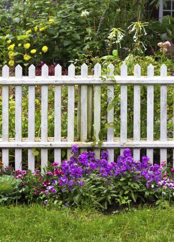 הקמת גדר לגינה – טיפים ועצות